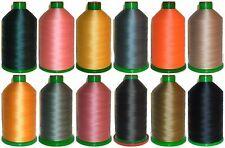 resistente fissato NYLON FILO ANNI '60,4500mtr,ipcabond Thread,colori assortiti