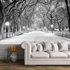 Central Park Nueva York Fotomurales Blanco y Negro murales pared Árbol de