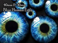 Taxidermy Glass Dragon, Doll, steampunk, Teddy Bear Eyes, Blue 40mm or 50mm