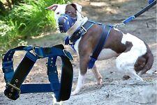 Nylon borghetti nero Pettorina Dobermann Pit Bull Terrier Rottweiler Dogo