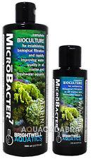 Brightwell microbacter 7 bioculture Bio Filtrazione Acqua Acquario Fish Tank