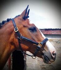 STUBBEN German Leather Comfort PADDED Show Horse Halter Headcollar BRASS Buckles