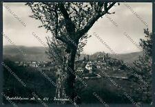 Grosseto Castel del Piano foto cartolina B2223 SZG