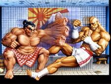 Street Fighter Sagat vs Edmond Honda Classic Game Art Huge Print POSTER Affiche