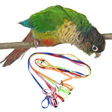 1PC 1.2M Bird Parrot Harness Adjustable Strap Leash Training Rope Pet Supplies