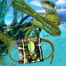 Realistic Jungle Vine For Lizard Reptile Vivarium Silk Plant Simulate Vine 2 M