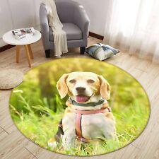 3D Smiling Dog Cute S165 Animal Non Slip Rug Mat Elegant Photo Carpet Sunday