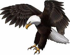 Attack Eagle Camper RV motor home mural graphic