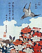 Cuckoo and Azaleas by K. Hokusai. Fine Art Repro Made in U.S.A Giclee Prints