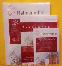 Aquarellblock Britannia Hahnemühle Aquarellpapier 300g Größe & Struktur wählbar!