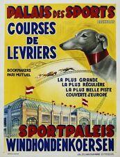 Vintage Belga Bruselas las carreras de galgos Poster A3 impresión
