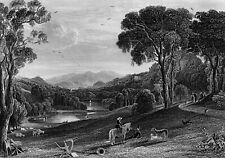 VLIES Fototapete-LANDSCHAFT-(3940V)-Schwarz-Weiß Natur Wanddeko Bäume See Berge