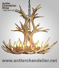 REAL SHED ANTLERS CASCADE MULE DEER CHANDELIER, RUSTIC LIGHTING , 8 LAMPS