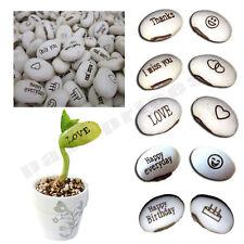 Message MAGIQUE haricots graines, Fun Fantaisie Cadeau, développer votre propre message mot