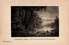 1868 PRINT ~ VIEW OF VICTORIA REGIA LILIES ON RIVER BERBICE GUIANA