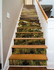 3D The vast meadow Stair Risers Decoration Photo Mural Vinyl Decal Wallpaper AU