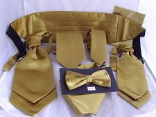 Brillante poliéster Gold Collection & gt Pañuelos-Moños-cravats-cummerbunds + Juegos