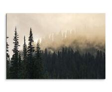 Wandbild Landschaftsfotografie Nebel im Tannenwald auf Leinwand