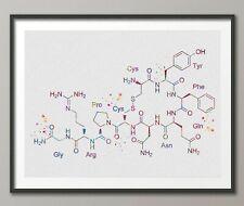 Vasopressin Molecular Structure Watercolor Print Medical Antidiuretic ADH-1426