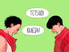 Akira Kaneda Tetsuo Anime Manga Art Huge Giant Wall Print POSTER