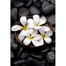 Stickers muraux déco : galets noirs fleurs 1337
