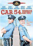 CAR 54, WHERE ARE YOU? David Johansen DVD *Disc Only-NO CASE *Rare & OOP!