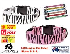 LED Light Up Dog Pet Collar Zebra Print Water Resistant USB Charging Battery Fun
