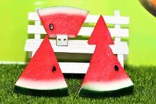 New Cute Novelty Watermelon Pen/Flash Drive Memory Stick Gift Storage USB 2.0