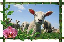 Sticker mural trompe l'oeil déco bambou Mouton réf 964