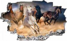 Pferde Rennen Pferd Tierwelt Wandtattoo Wandsticker Wandaufkleber C0970
