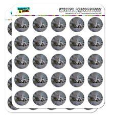 Gray Domestic Shorthair Kitten Cat Fur Planner Calendar Scrapbooking Stickers