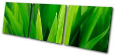 Floral Grass Shoots TREBLE LONA pared arte Foto impresion