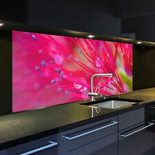 Digitaldruck auf Glas 1010-1-GB Motiv Gorgonie für Ihre Küche oder als Bild