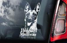 Belgian Malinois on Board - Car Window Sticker - Mechelse Dog Sign Decal - V10