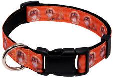 Country Brook Design® Deluxe Pekingese Ribbon Dog Collar