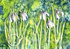 Snowdrops impresión de arte de las impresiones Acuarela Pintura CAMPANILLA Blanca Cardo de corazón