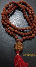 RARE GURU BEAD RUDRAKSHA 2 3 4 5 6 MUKHI FACET JAPA MALA YOGA HINDU MEDITATION