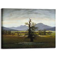 Caspar albero solitario design quadro stampa tela dipinto telaio arredo casa