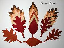 18 x DIE CUT FELTRO lascia grandi autunno Browns Tonalità di Marrone Mix misti BEIGE TAN