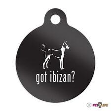 Got Ibizan Engraved Keychain Round Tag w/tab hound Many Colors