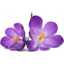 Sticker Fleur violette 026 026