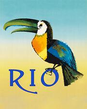 Brazil Toucan Bird Rio de Janeiro South American 16 X 20 Vintage Poster FREE S/H