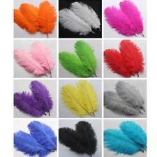 AU_ 15Pcs Soft Natural Ostrich Feathers Clothes Wedding Decor 15-20cm/6-8inch Ey