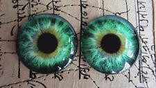 Taxidermy Glass Dragon, Doll, steampunk, Teddy Bear Eyes, Green 40mm or 50mm