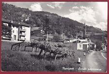 VALLE D'AOSTA MONTJOVET 03 UVA VITE VINO Cartolina FOTOGRAFICA