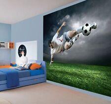 sports wallpaper murals ebaychildren\u0027s footballer wallpaper wall mural photo (24391728) football sports ball