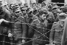 WW2 - Prisonniers allemands en camp de transit de l'armée canadienne 19.08.44
