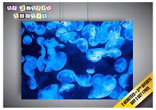 Cartel Poster Medusas Animales Azul Criaturas Danger Sombre Océanos Profundos