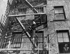 8b6-363 Evelyn Keyes mystery film The Killer That Stalked New York 8b6-363