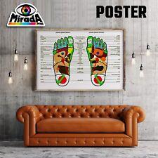 POSTER RIFLESSOLOGIA PLANTARE PIEDI BENESSERE CARTA FOTOGR. 35x50 50x70 70x100